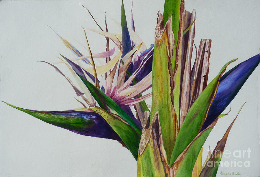 White Bird Of Paradise Tree Painting By Susan Duda
