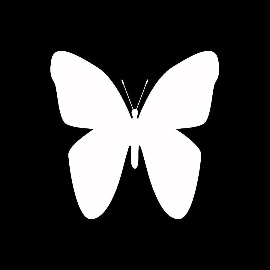 White Butterfly Silhouette Digital Art By David G Paul