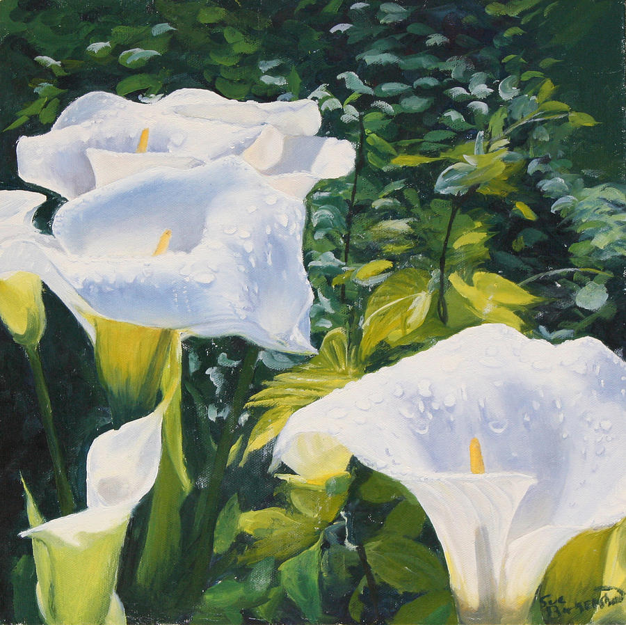 White Calla Lilies Painting By Sue Birkenshaw
