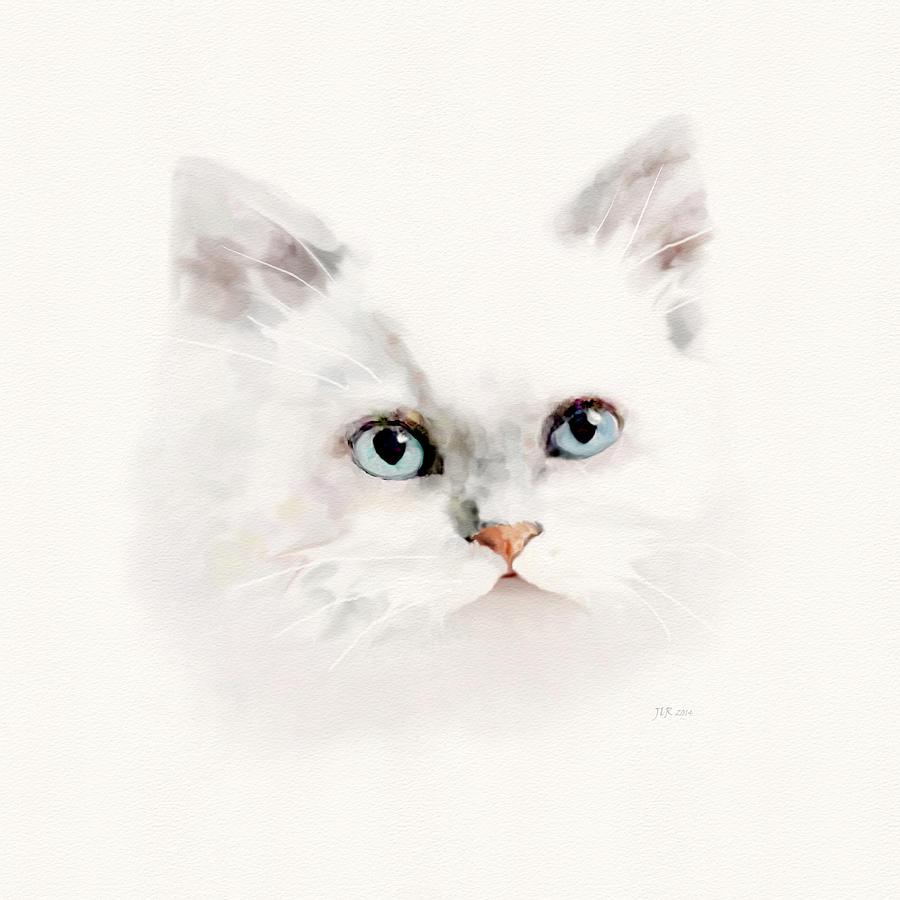 Cat Painting - White Blue Eyed Cat by Bamalam  Photography