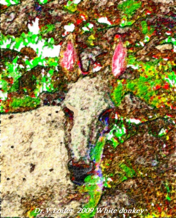 Landscape Digital Art - White Donkey-owner Of Hills by Dr Loifer Vladimir