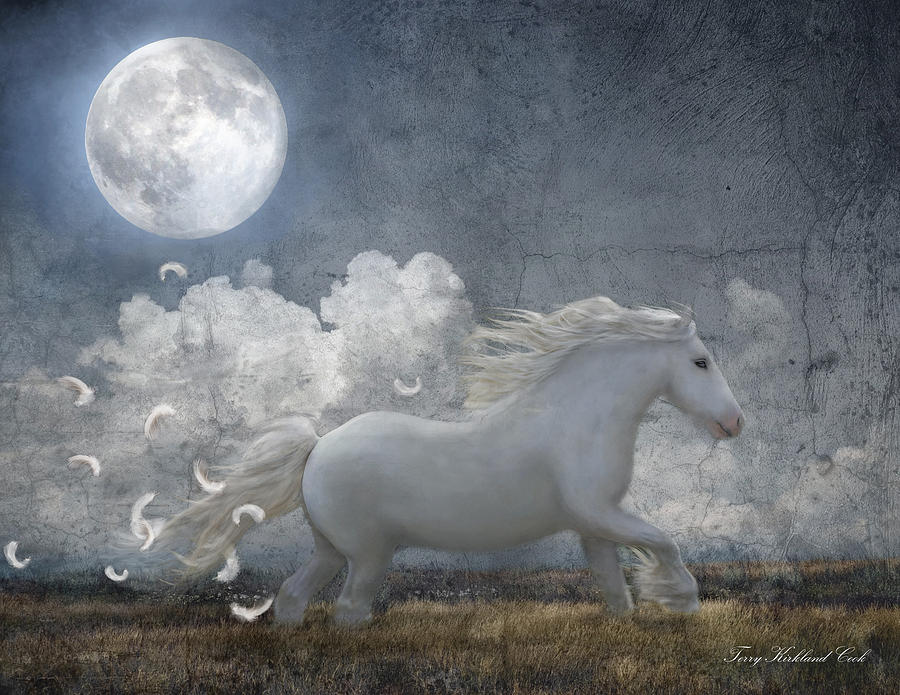 Equine Photograph - White Feathered Moon by Terry Kirkland Cook