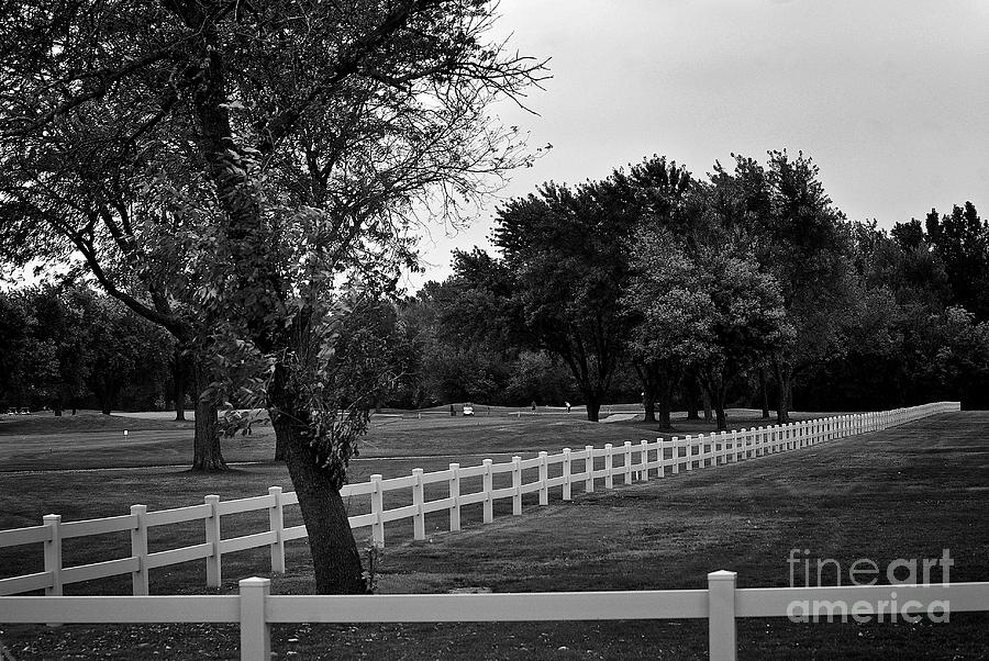 White Fence On The Wooded Green Photograph