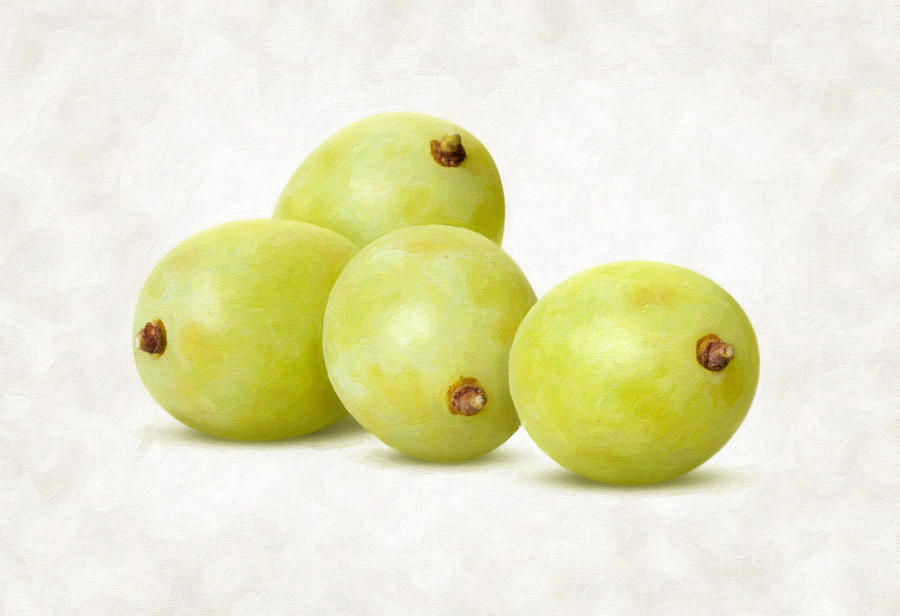 Grapes Painting - White Grapes by Danny Smythe