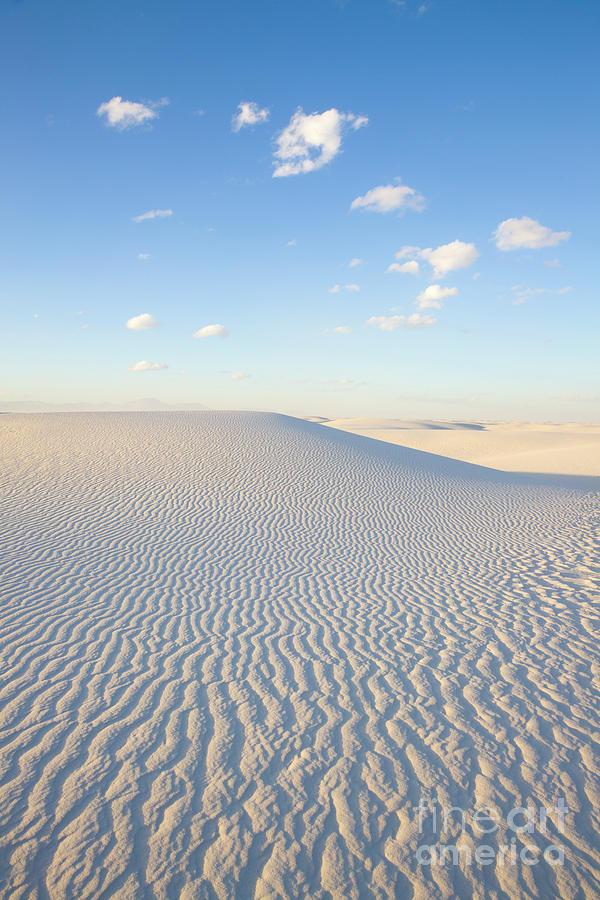 Mp Photograph - White Gypsum Dune  by Yva Momatiuk John Eastcott