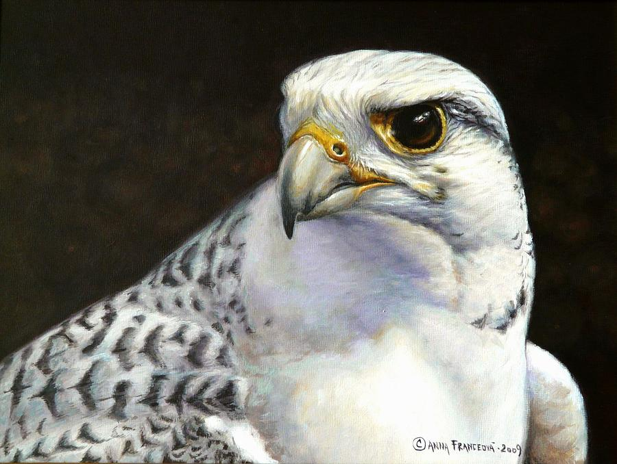 Falconry Painting - White Gyrfalcon by Anna Franceova