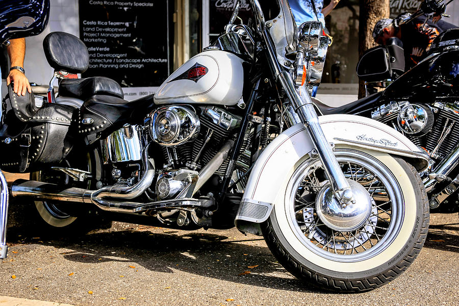 White Harley Photograph