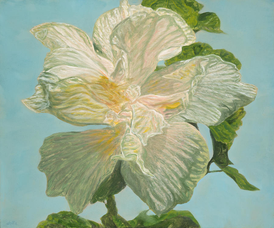 Double White Hibiscus Painting - White Hibiscus by Michael Allen Wolfe