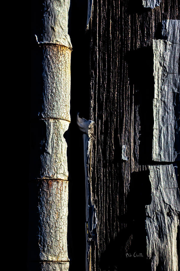 Abstract Photograph - White Hinge On The Old Red Barn by Bob Orsillo