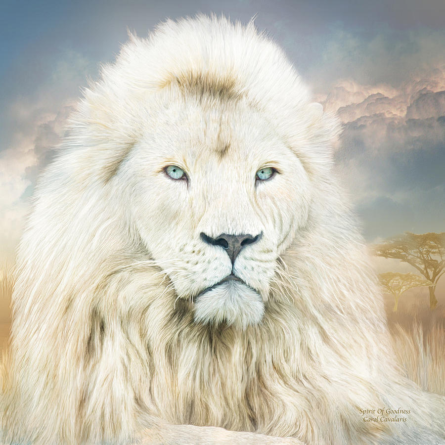 white lion   spirit of goodness mixed media by carol cavalaris