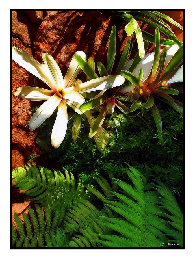 Maui Digital Art - White Maui Flowers by Joan  Minchak