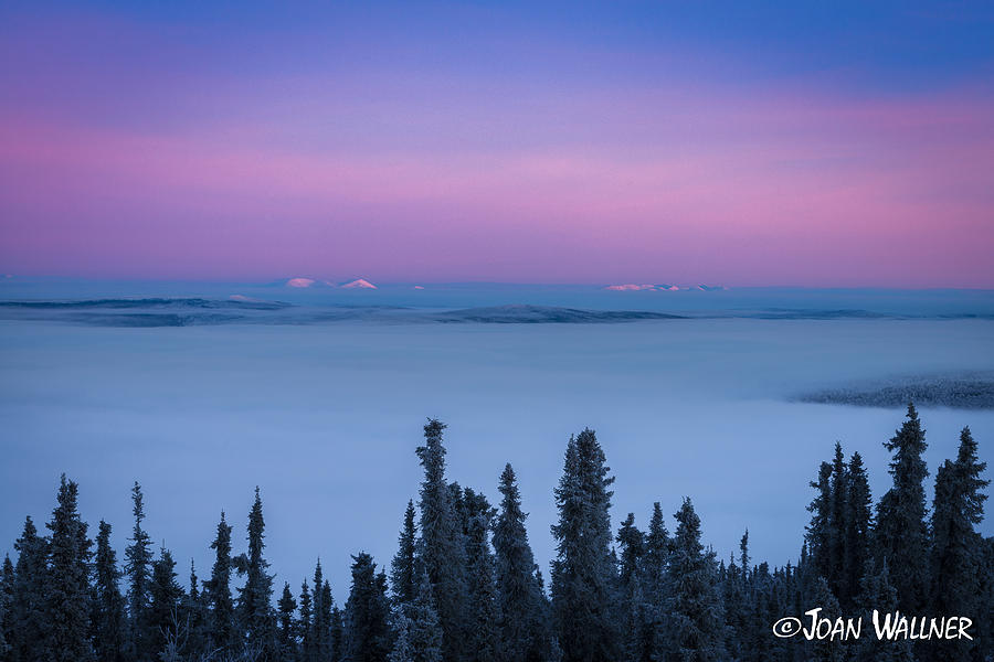 Alaska Photograph - White Mountains in a Sea of Clouds by Joan Wallner