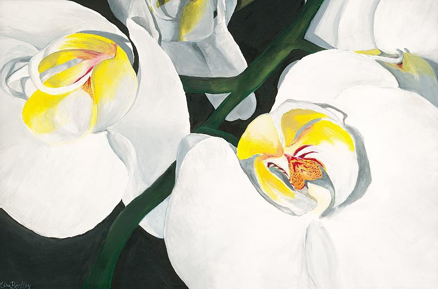 White And Yellow Orchid Painting - White Orchid by Lisa Bentley
