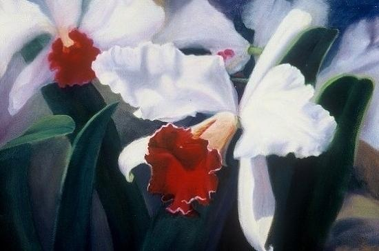 Flowers Painting - White Orchid by Lynda Hughes