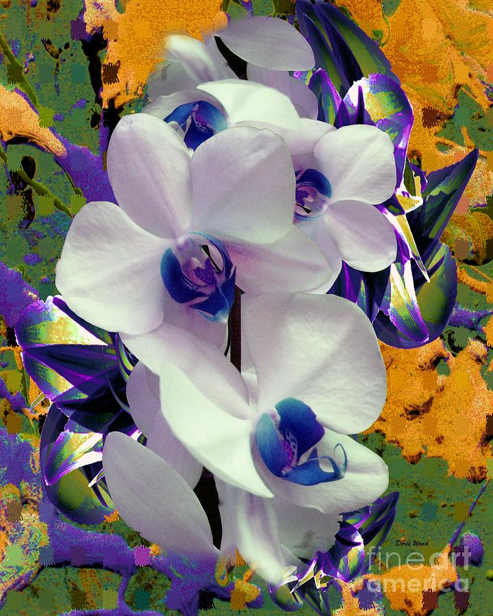 Orchid Digital Art - White Orchids With A Touch Of Purple by Doris Wood
