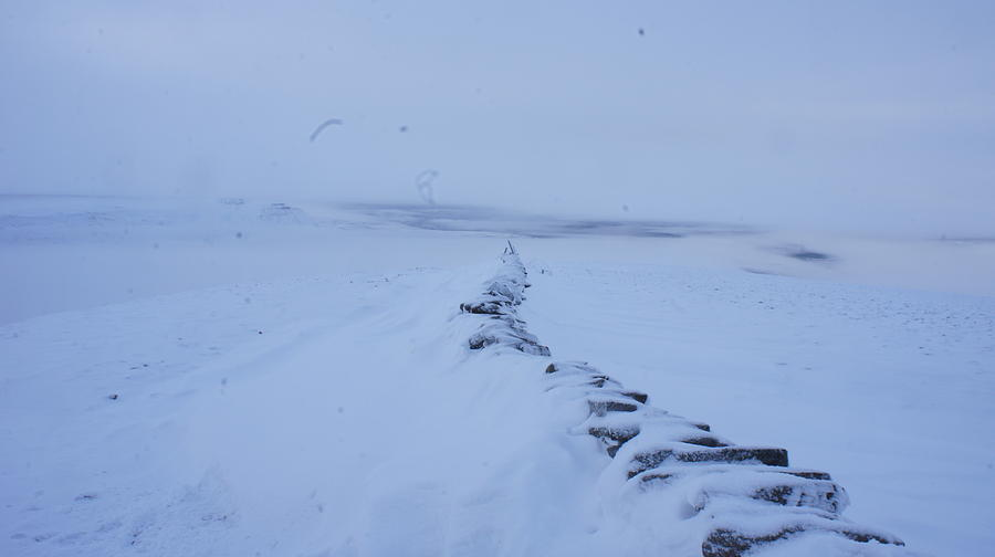 Snow Photograph - White Out by Riley Handforth