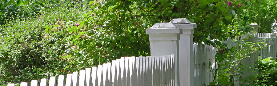 White Picket Fence 7 Photograph
