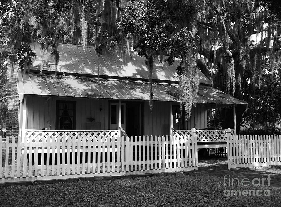 White Picket Fence Photograph - White Picket Fence by Mel Steinhauer