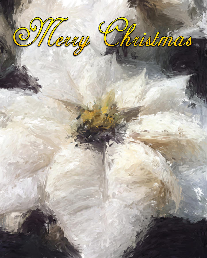 Poinsettias Painting - White Poinsettias Christmas Card by Jennifer Hotai