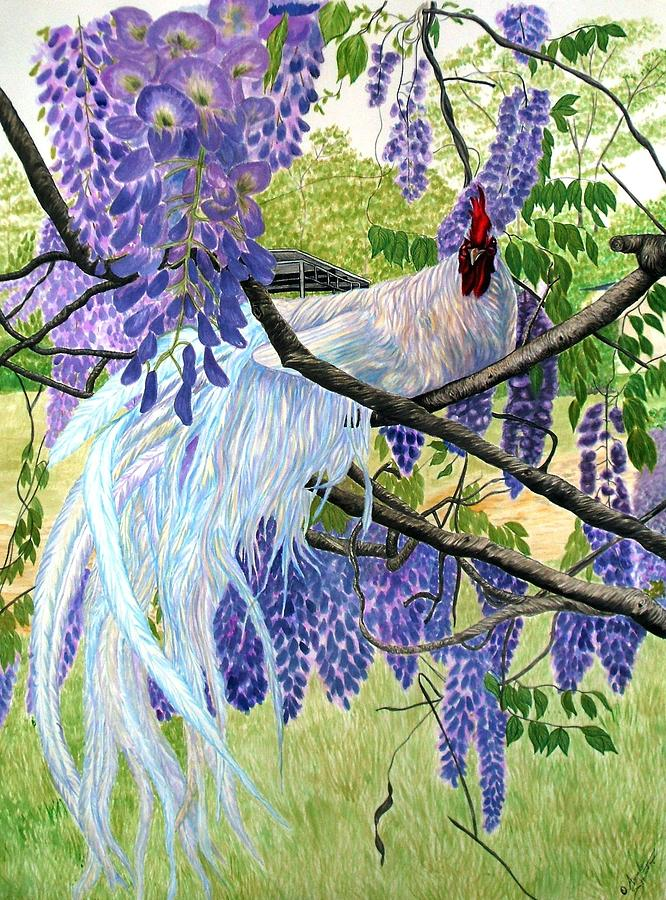 White Rooster In Wisteria Painting By Amanda Hukill