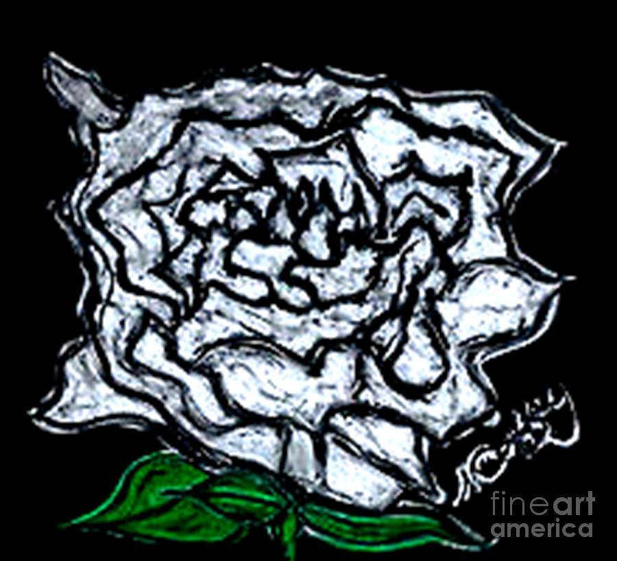 Roses -flowers-oil Pastels- Green -white- White Roses Pastel - White Rose by Neil Stuart Coffey