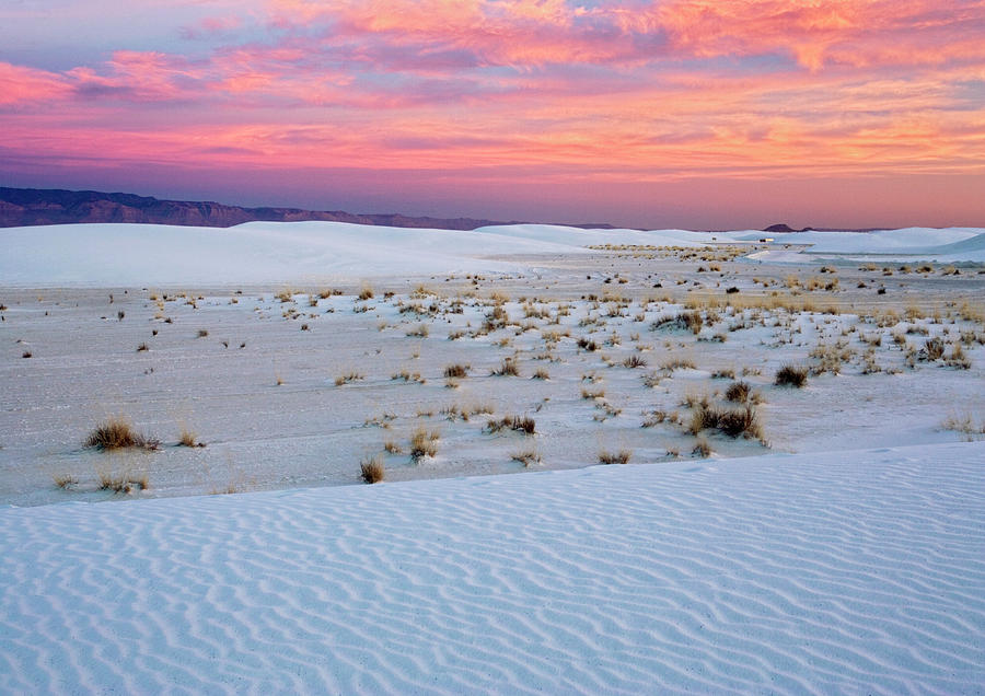 White Sands National Monument Photograph - White Sands National Monument by Bob Gibbons/science Photo Library