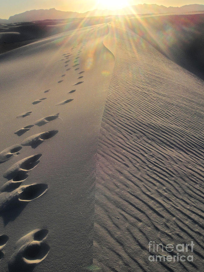 White Sands New Mexico Photograph - White Sands New Mexico Footsteps In The Sand by Gregory Dyer