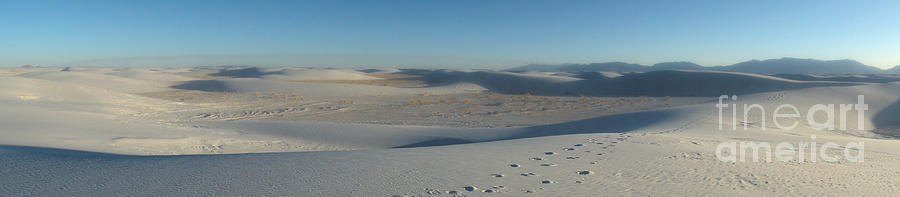 White Sands Photograph - White Sands New Mexico Panorama 02 by Gregory Dyer