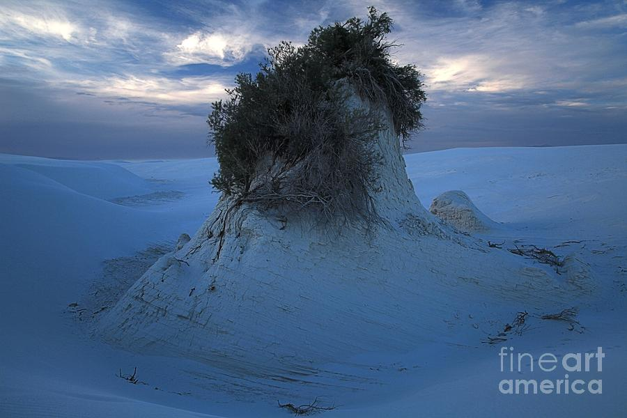 White Sands National Monument Photograph - White Sands Turns Blue by Adam Jewell