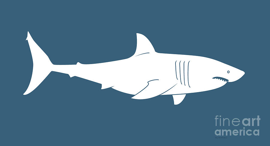 Great Painting - White Shark by Amy Kirkpatrick