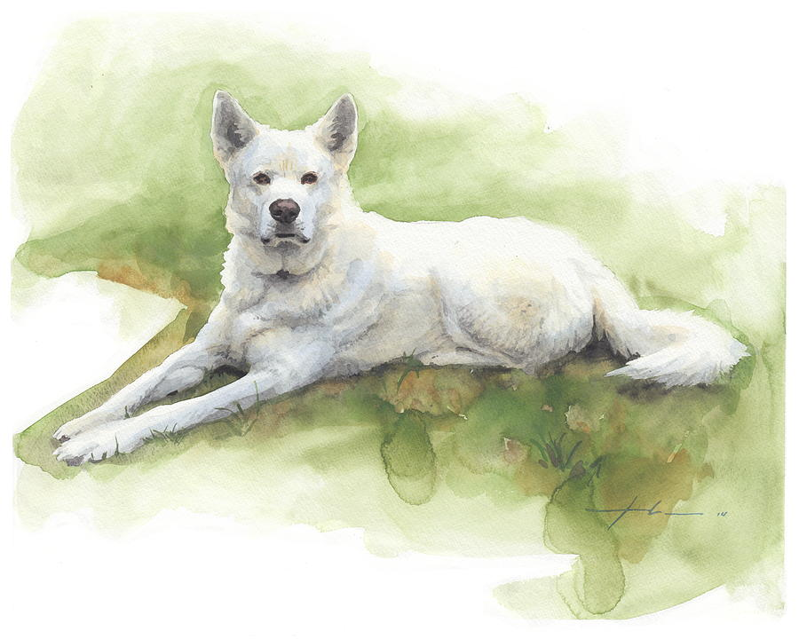 White Sled Dog Lying On Grass Watercolor Portrait Painting by Mike Theuer