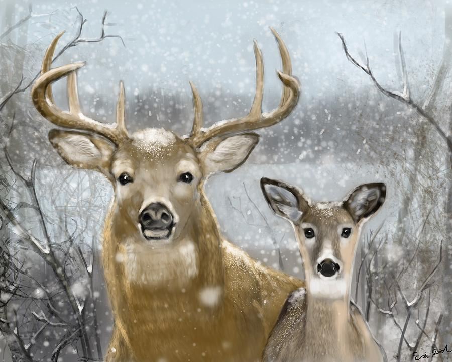 Deer Digital Art - White Tail Winter by Eric Smith