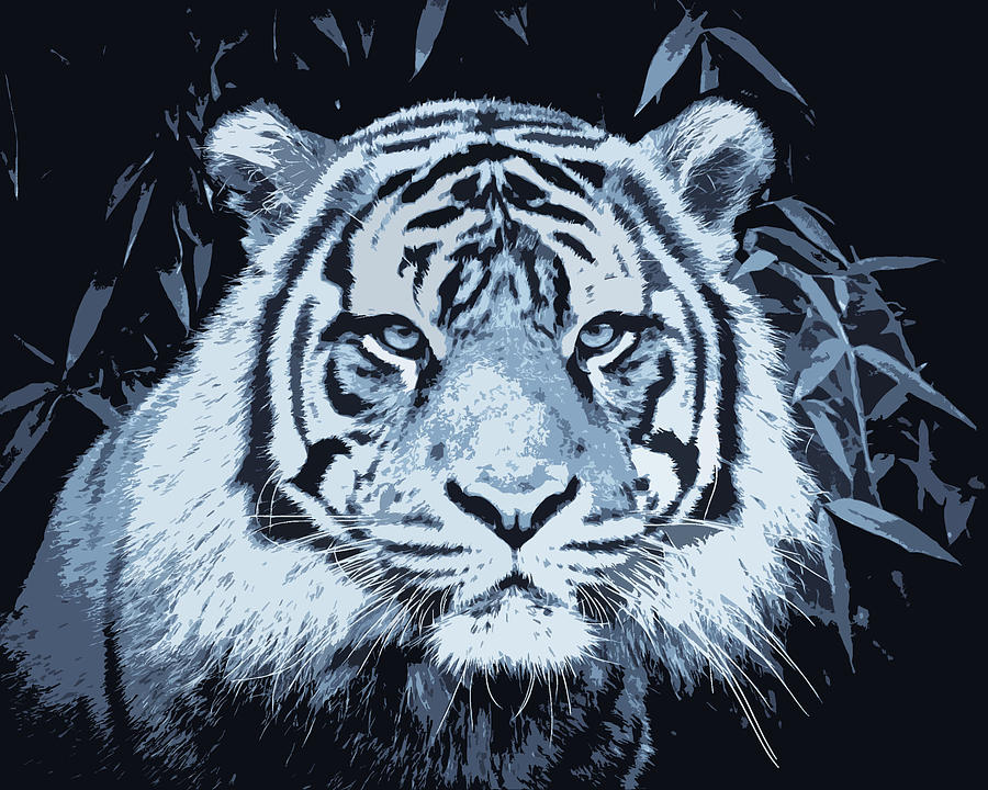 White Tiger Paint Photograph by Steve McKinzie