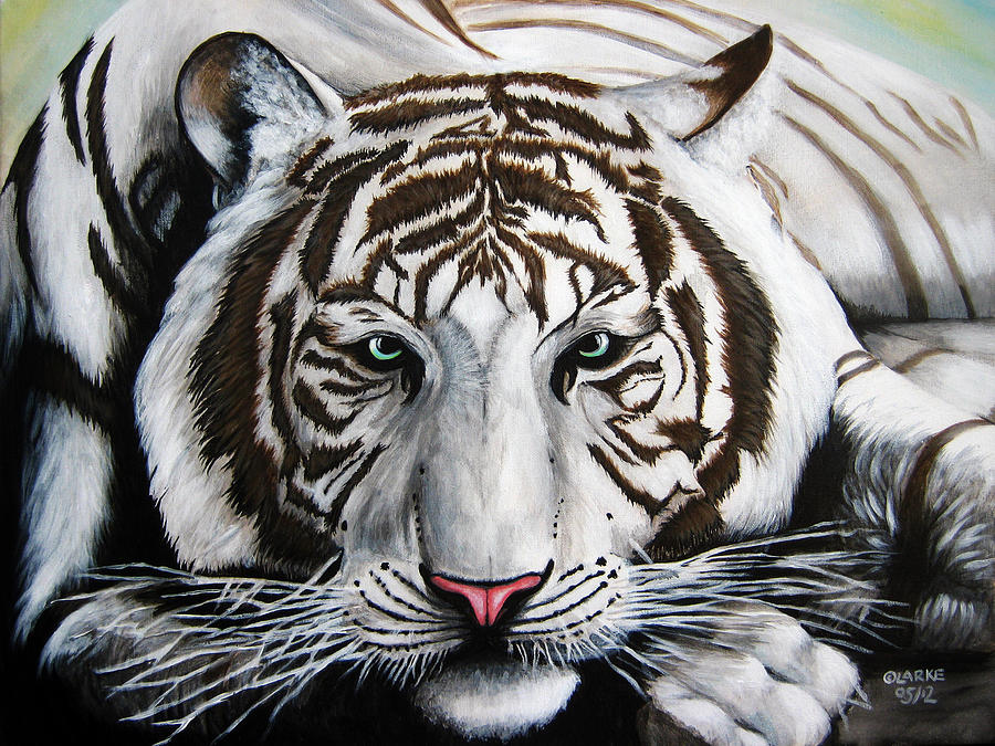 White Tiger Painting by Stacey Clarke