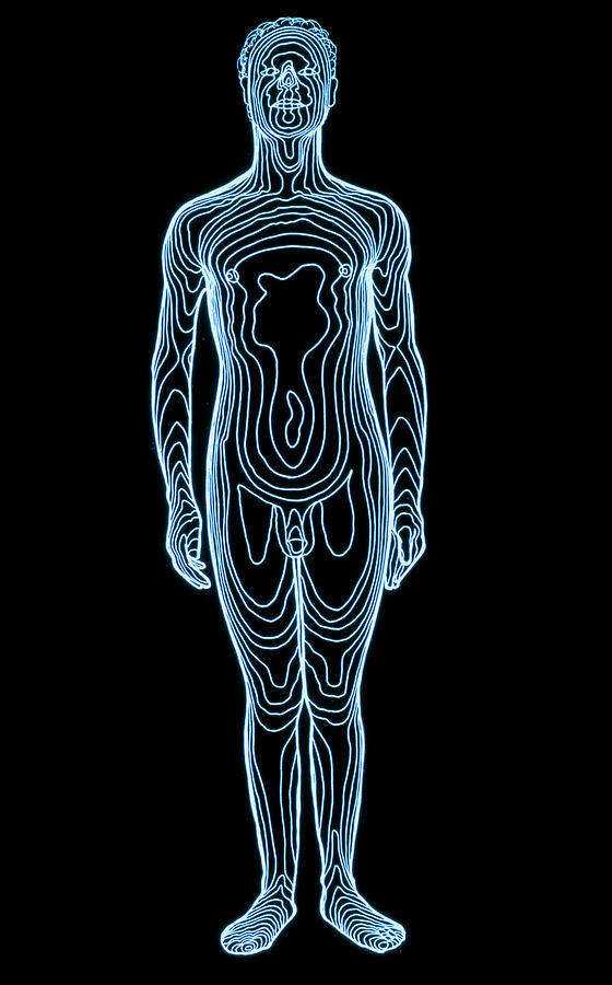 Whole-body Contour Map Of Man Photograph by Dr Robin ...