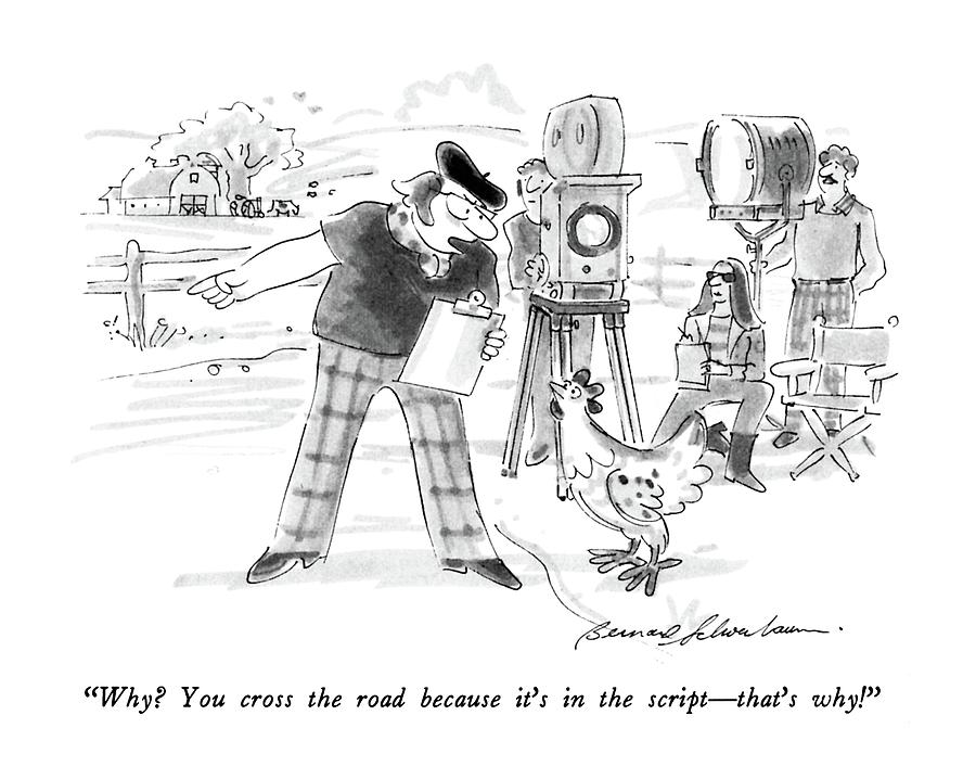 Why?  You Cross The Road Because Its Drawing by Bernard Schoenbaum
