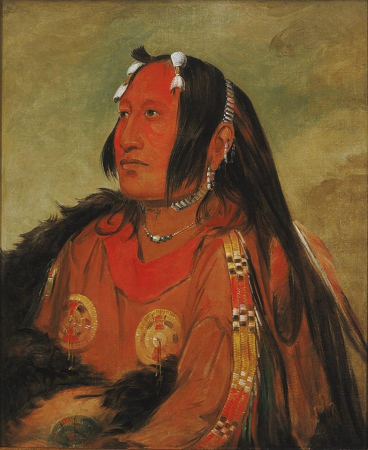 George Catlin Painting - Wi-jun-jon. Pigeons Egg Head. A Distinguished Young Warrior by George Catlin
