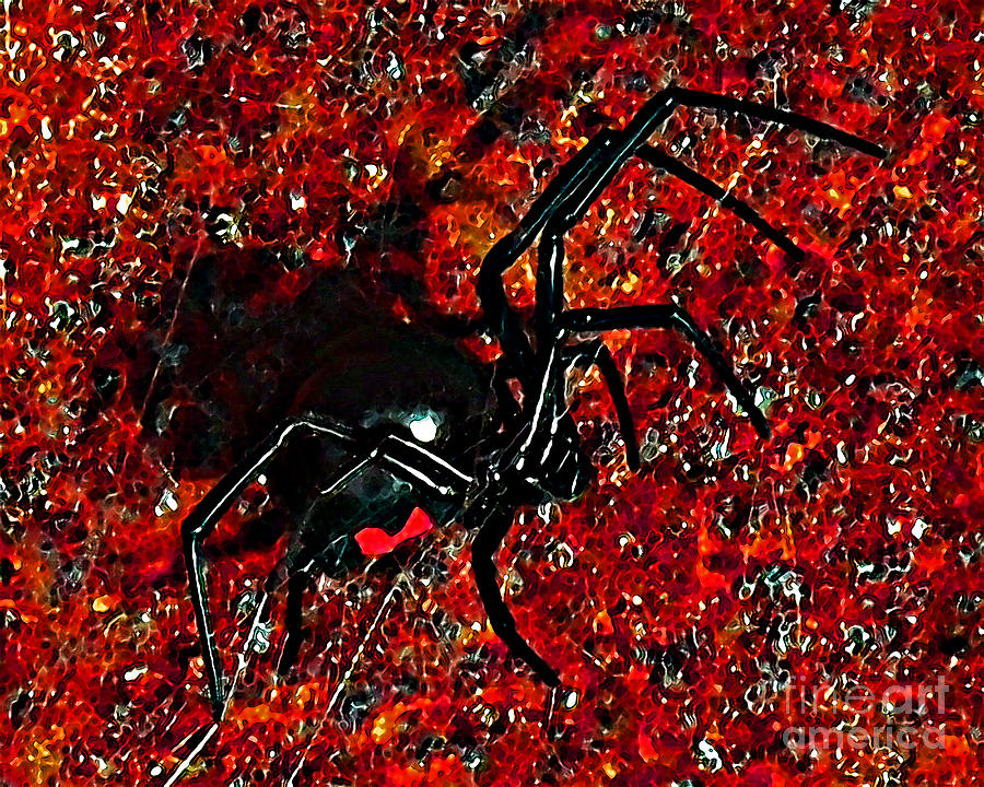 Black Widow Spider Photograph - Wicked Widow - Rouge by Al Powell Photography USA