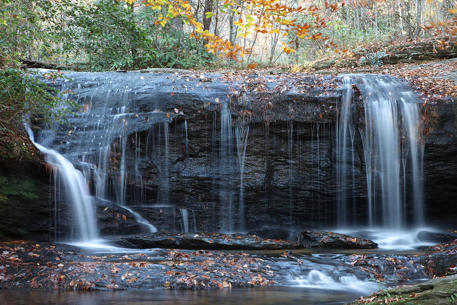 Forest Photograph - Wide Waterfall by Rod Flasch