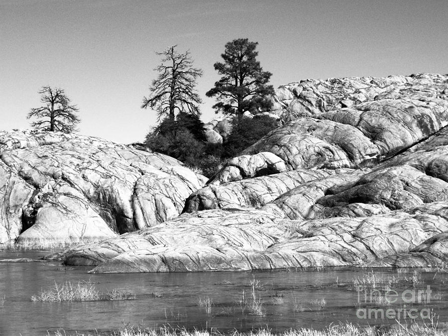 Willow Lake Photograph - Willow Lake Number One Bw by Heather Kirk
