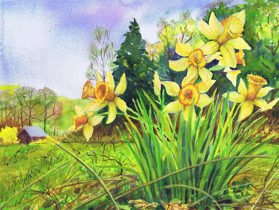 Daffodils Painting - Wild Daffodils by Susan Herbst