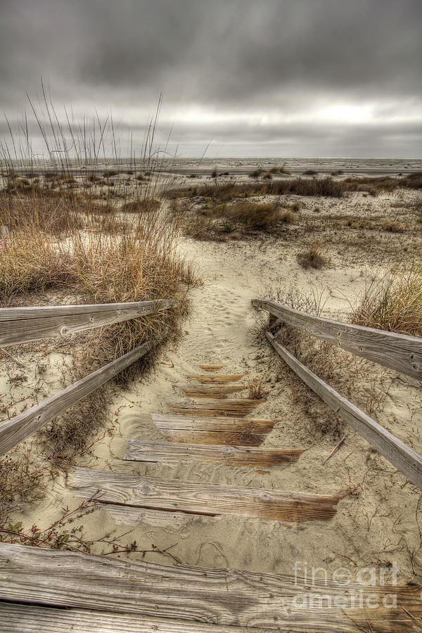 Wild Dunes Photograph - Wild Dunes Beach South Carolina by Dustin K Ryan
