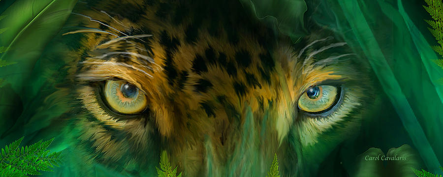 Wild Eyes - Jaguar by Carol Cavalaris