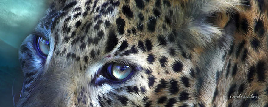 Wild Eyes - Leopard Moon by Carol Cavalaris
