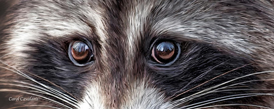 how to fix raccoon eyes