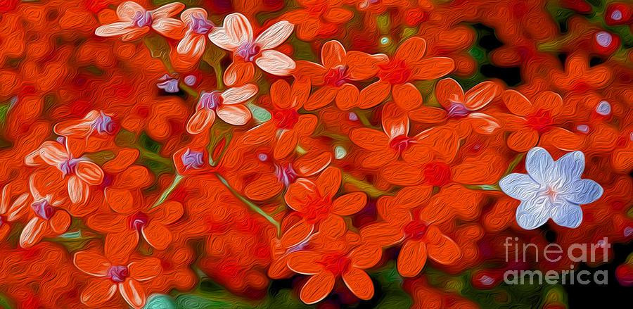 Wild Flowers Mixed Media - Wild Flowers by Jon Neidert