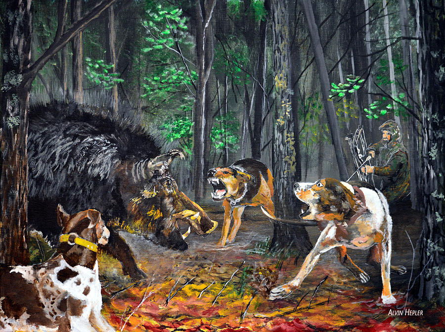Wild Hog Hunt