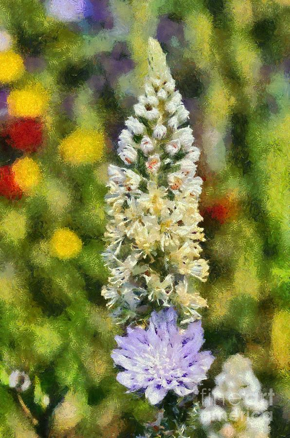 Reseda Alba; White Mignonette; White; Flower; Flowers; Wild; Plant; Spring; Springtime; Season; Nature; Natural; Natural Environment; Natural World; Flora; Bloom; Blooming; Blossom; Blossoming; Color; Colour; Colorful; Colourful; Earth; Environment; Ecological; Ecology; Country; Landscape; Countryside; Scenery; Macro; Close-up; Detail; Details; Greece; Hellas; Greek; Hellenic; Attica; Attika; Attiki; Paint; Painting; Paintings Painting - Wild Mignonette by George Atsametakis