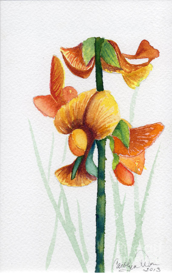 Orchid Painting - Wild Orchid by Carolyn Weir