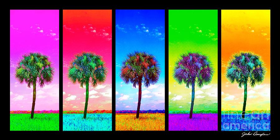 Wild Palms x5 by John Douglas